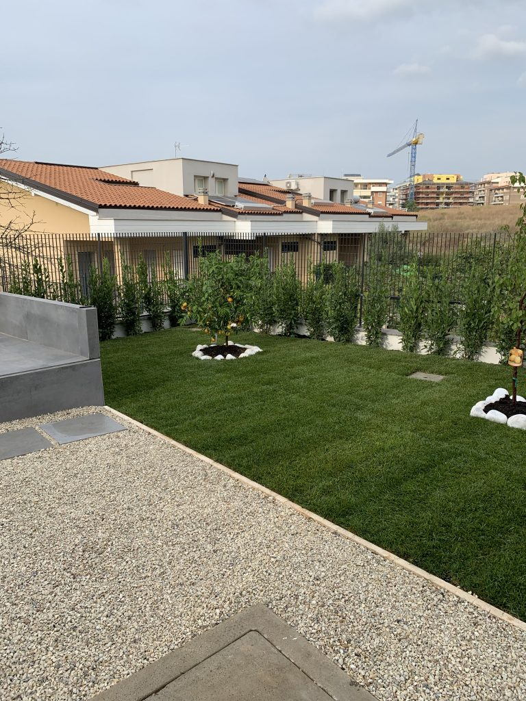 Piante Siepe Crescita Rapida il vivaio roma garden - piante, vasi, terricci consegne a