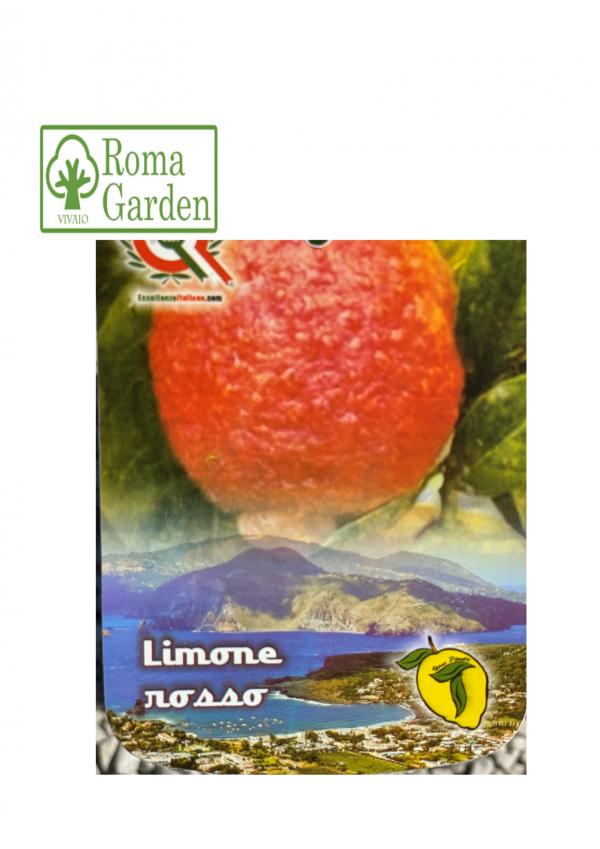 Agrumi Limone